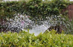The benefits of using wastewater irrigation in agriculture