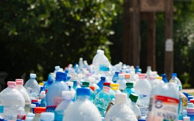 How will the potential new single-use plastic tax affect UK businesses?